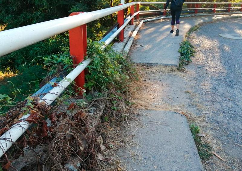 Piden mantenimiento para el puente Paso Ancho