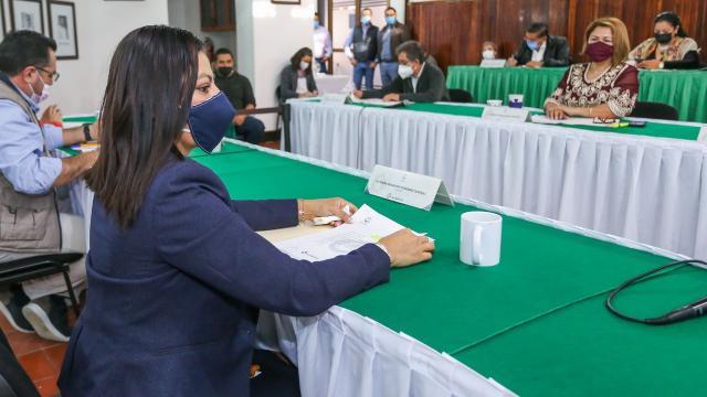 Guadalupe Guerrero, candidata por Movimiento Ciudadano