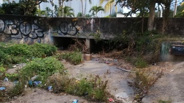 Puente en zona turística de Vallarta