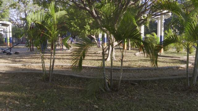 Parque en La Aurora
