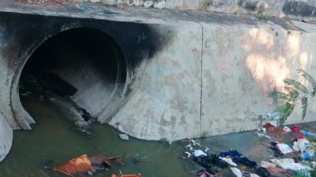 Aguas Negras contaminan la dársena de la terminal marítima