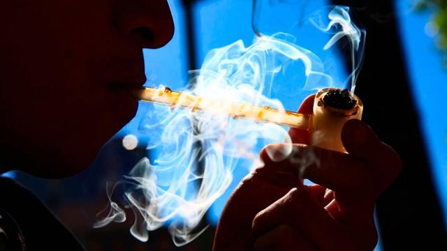 Posterga Senado hasta abril ley que legaliza marihuana