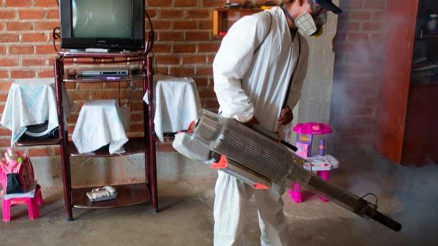 Perú en alerta epidemiológica por incremento de casos de dengue