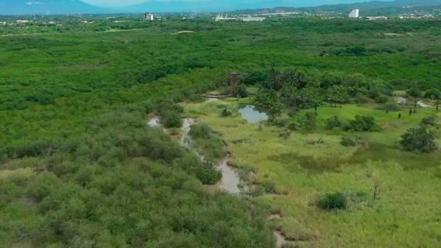 Cuidan que obras en El Salado no afecten área natural
