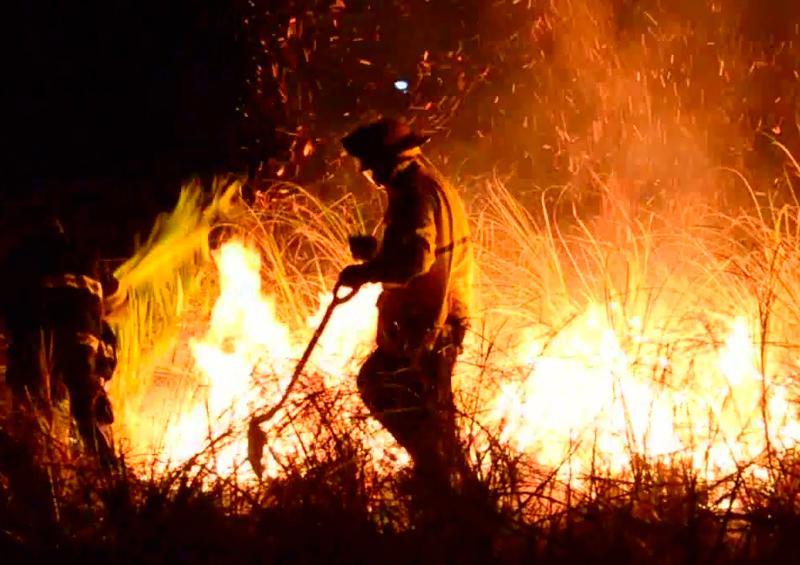 Bomberos de Vallarta se capacitan para incendios forestales