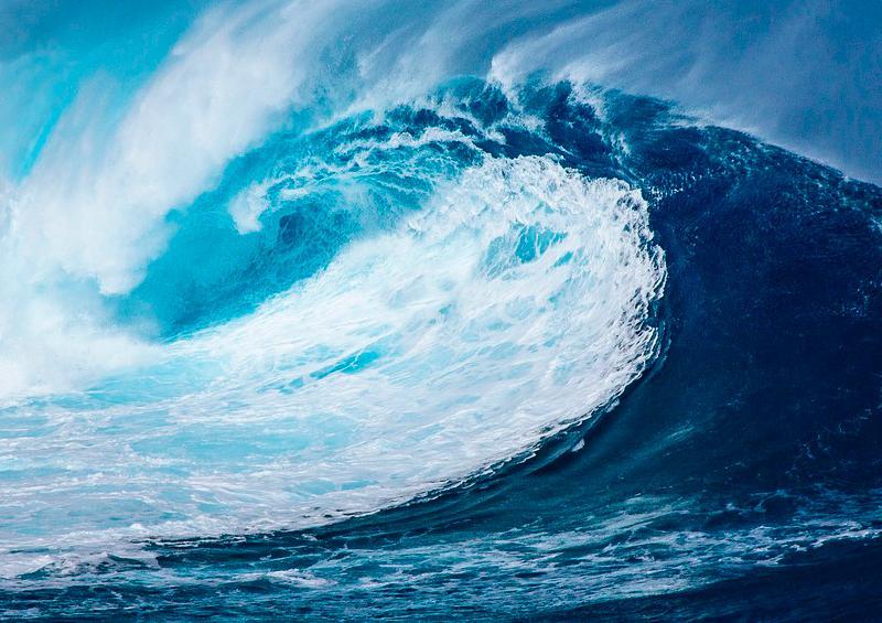 Preocupación en Jalisco por olas originadas en Nueva Zelanda