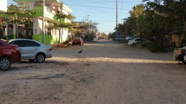 Calle en El Coapinole