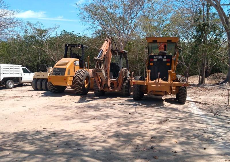 Mueven 130 árboles del Estero El Salado