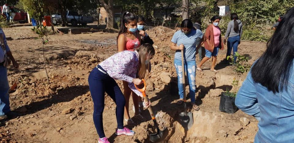 Plantan árboles en Tebelchia
