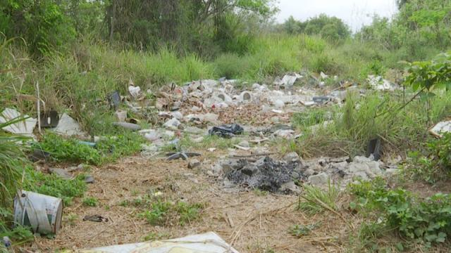 Ambientalistas limpian el lado abandonado del Estero