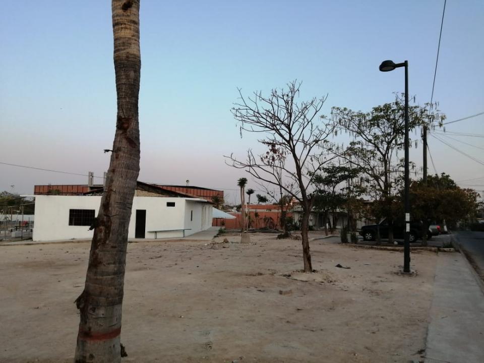 Abandono de áreas verdes en La Lija