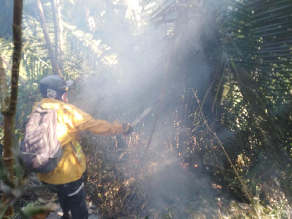 Medio centenar de bomberos combaten el fuego en la sierra