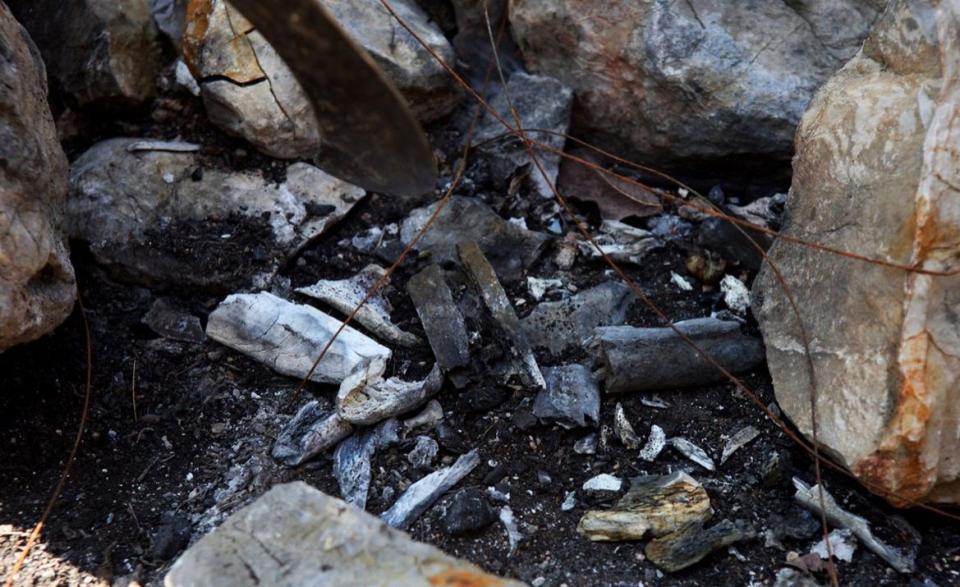 Identifican restos de Jhosivani Guerrero