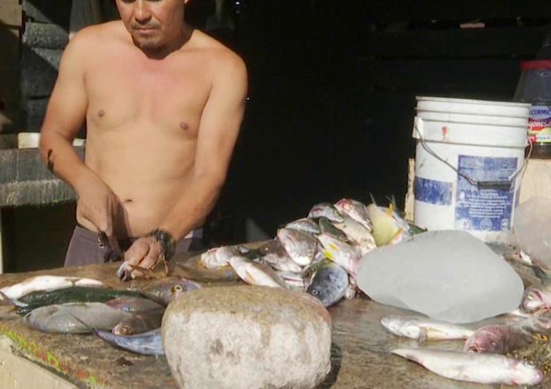 Diputada pedirá a AMLO no desaloje la API a pescadores