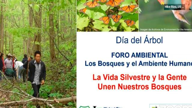 Celebran el Día del Árbol en Bahía de Banderas