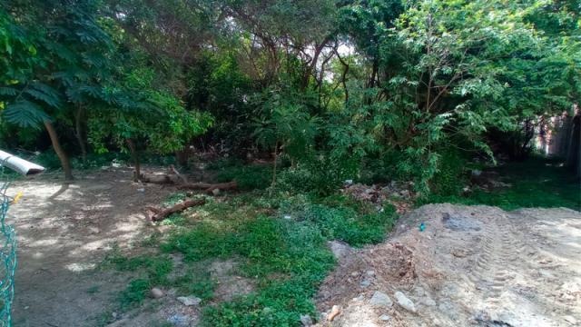 Vandalizada la cerca perimetral del Estero El Salado
