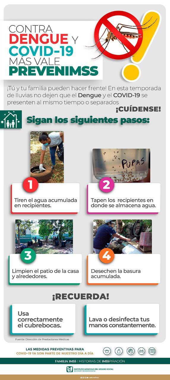 Acciones para prevenir el dengue, zika y chikungunya IMSS