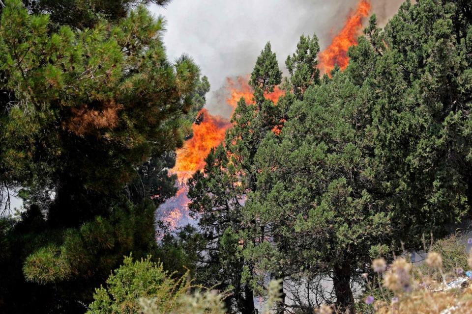 Incendio forestal en Líbano cobra la vida de un joven de 15 años