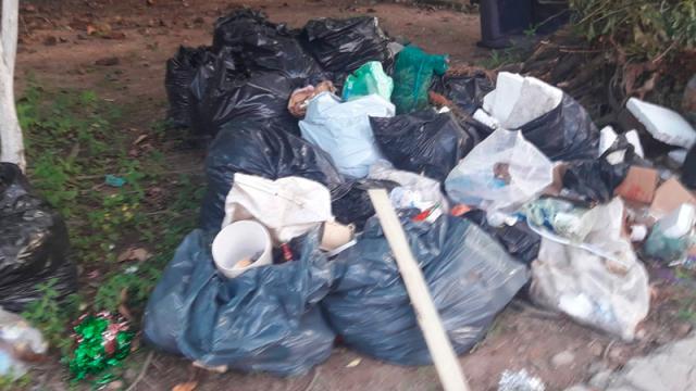 Aunque habrá recolección de basura, se recomienda no sacarla