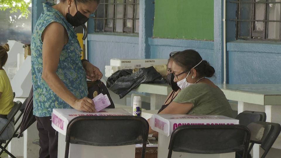 Consulta Popular en Puerto Vallarta