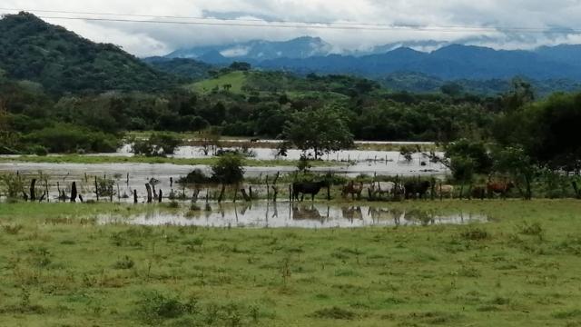 Crecida del río Ameca por huracán Nora