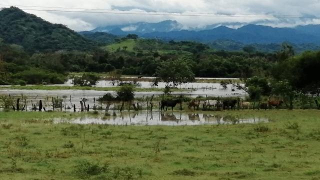 Pérdidas por crecida de Río Ameca en Bahía son incalculables