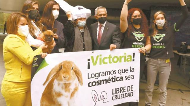 Prohíben pruebas en animales en México